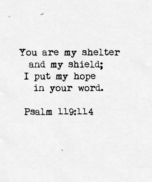 """You are my shelter and my shield; I put my hope in your Word."" ~ Psalm 119:114"