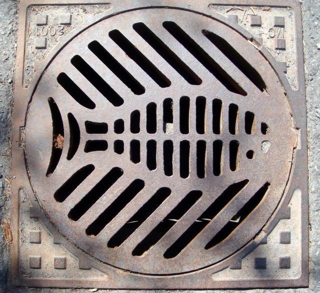 "Manhole Cover - Ottawa, Canada - ""Fish"""