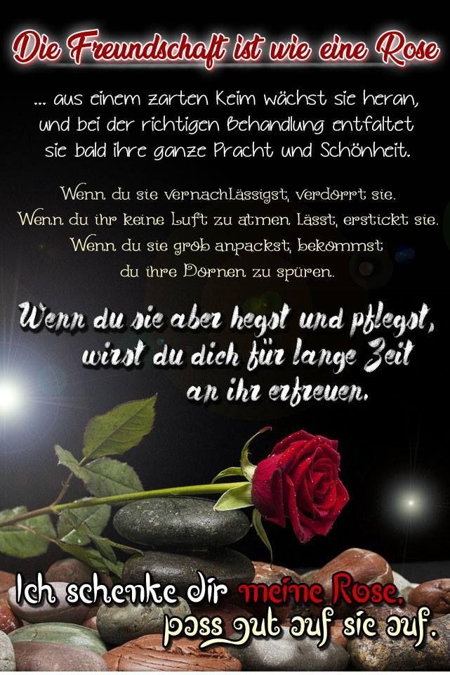 Pin Von Esma Ozdemir Auf Spruche Zitate Freundschaft Zitate Danke Schone Spruche Zitate Spruche Zitate