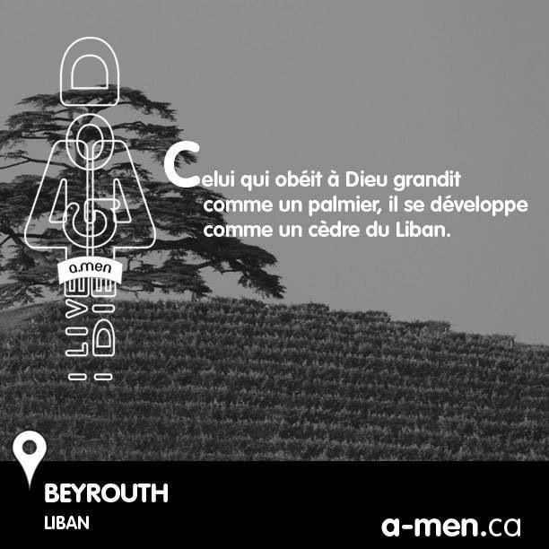Celui qui obéit à Dieu grandit comme un palmier, il se développe comme un cèdre du Liban. BEYROUTH, LIBAN #TAGAMEN http://www.fb.com/a.men.ca