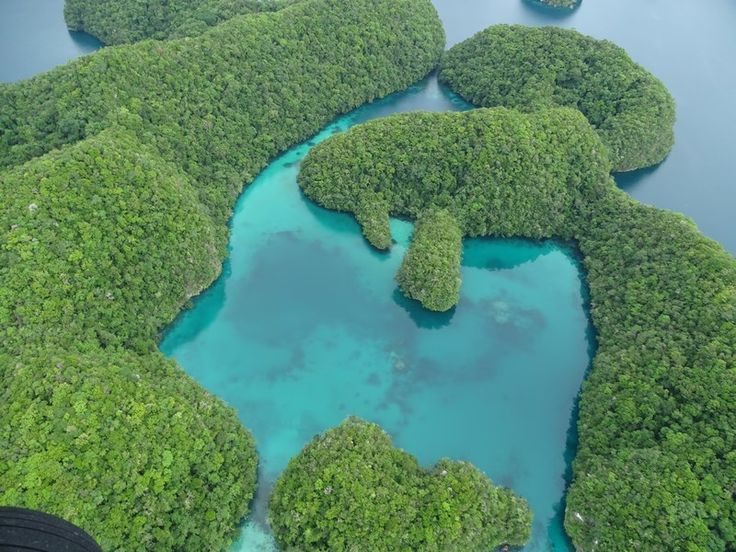 The incredible views of the Palau's Rock Islands - unforgettable. Read more: http://www.imperatortravel.ro/2017/02/dincolo-de-capatul-lumii-ep-3-in-zbor-peste-palau-cea-mai-frumoasa-experienta.html
