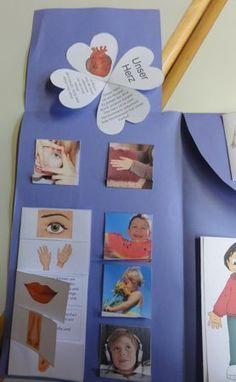 Lapbook in der Grundschule: Sachunterricht Körper Lapbook