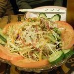 大阪インドカレー - 大阪のインド料理カレーレストランRAJA