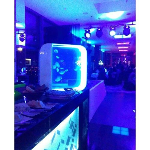 Akvárium s medúzami Cloud 9 sky bar.