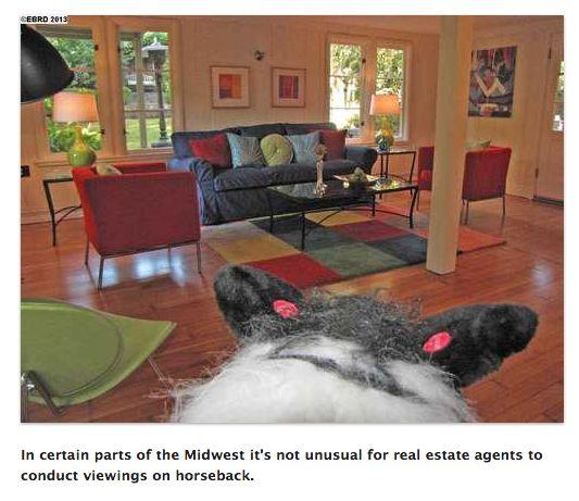Terrible Real Estate Photos Dot Com