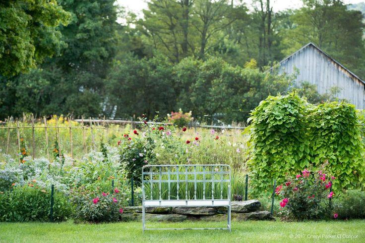 A beautiful Cutting Flower Garden Plan - by cheryl parker