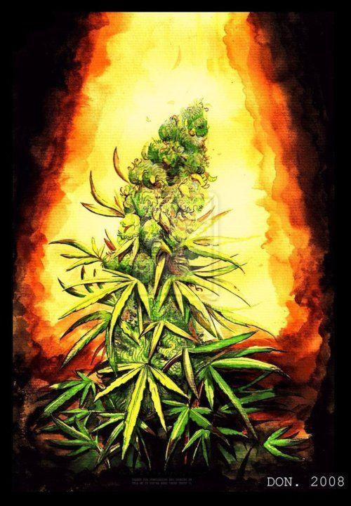 #weed #art    calmed420.com