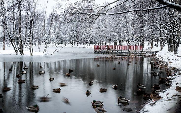 Cold I by Rosen Velinov on 500px