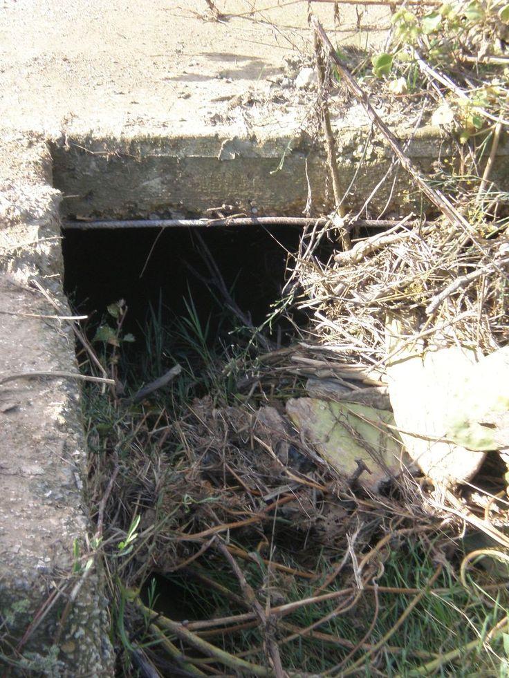 .... le sterpaglie lungo il canale quasi allo stesso livello dell'asse stradale... e da lì fuoriesce una parte dell'acqua che scavalcando la recinzione entra all'interno del terreno... La descrizio...