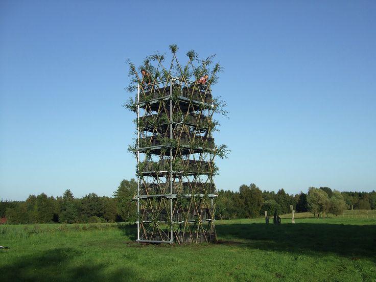 Baubotanik: Um sistema construtivo inspirado na botânica que cria estruturas vivas,Torre salgueiro após concluída. Imagem © Ferdinand Ludwig