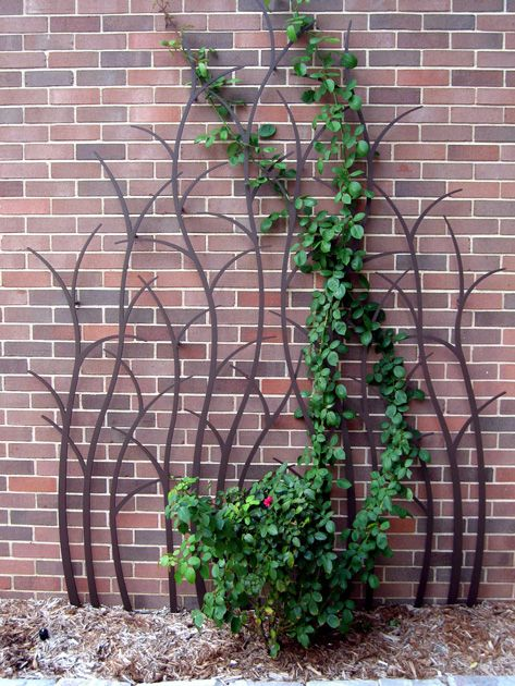 Branching Trellis, for climbing rose, on stakes in the ground and bolted to the wall. Fabricated of ¼″ stainless and powder-coated for color. Size: 6' wide by 7 ½' tall.