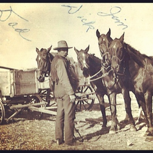 From Grandma's Photo Album: Her father on wheat farm in Western Canada in early 1900's. Great Grandpa could sure ride a horse!