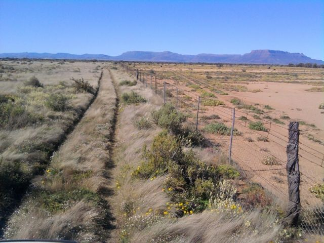 Holistic Management with high stocking rates on the left & low stock rates to the right.   Land Restoration with Holistic Management | Planet-TECH Associates: Trends. Innovations. Opportunities.