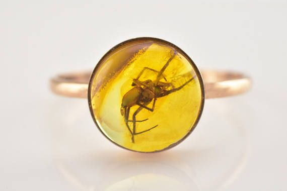 Amber Ring Amber LARGE SPIDER Insect Amber Gold Insect Ring