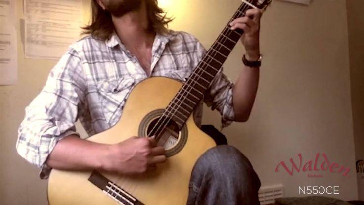 Walden Guitars - Tom Gamble