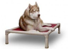 Have this bed.. Standard+Dog+Bed+-+Kuranda+Dog+Beds