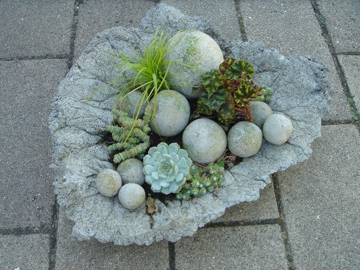 Cementblad/kugler plantet til med succulenter. Beautiful composition of succulents in the amazing garden of Ellen Lundum.