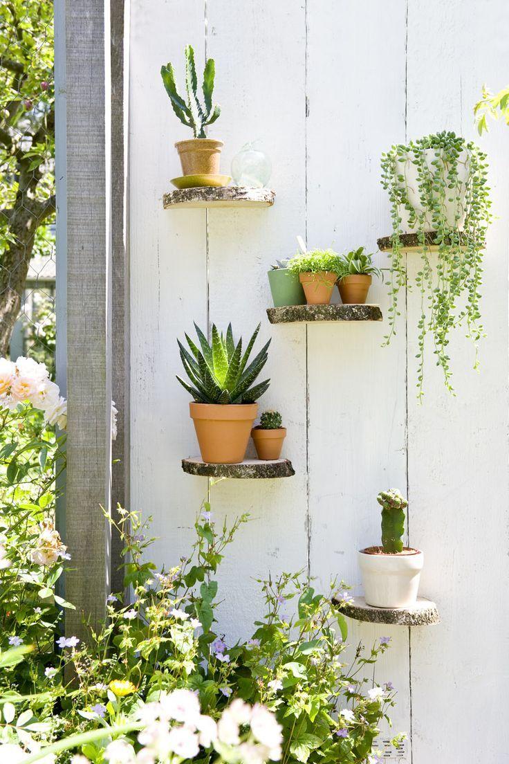 (via STIJLVOL STYLING - WOONBLOG Interieur, woonideeën, buitenleven, zelf maak ideeën, feest styling tips: Groen wonen & DIY   Zomerse ideeën met vet planten & cactussen   DIY mini tuintje maken)