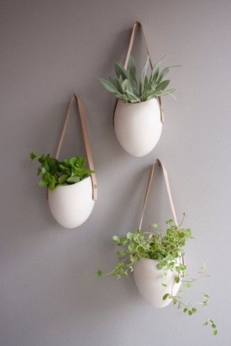 hanging plant holders - great idea for some green around the house