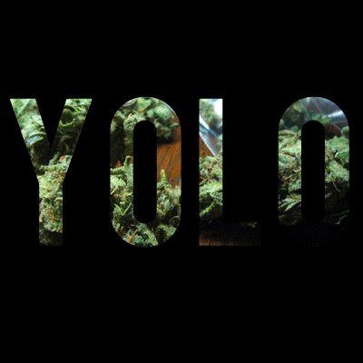 YOLO;  Sólo se vive una vez que el GIF