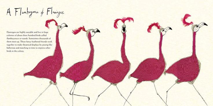 A Tower of Giraffes: Animals in Groups – Charlesbridge