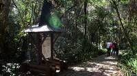 ¿Amante de los viajes y de la naturaleza? No te pierdas entonces este artículo sobre las ciudades más verdes del planeta. http://www.bbc.co.uk/mundo/noticias/2015/01/150107_vert_tou_cultura_ciudades_verdes_lv