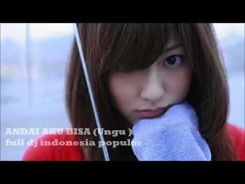 Full Dj lagu indonesia populer ( andai aku bisa ) ungu