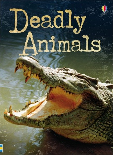 Deadly Animals - http://www.usborne.com/catalogue/book/1~NH~NR~8867/deadly-animals.aspx  #deadly #animals #Deadly60 #CBBC #crocodile #Usborne #book #nonfiction #beginner #reading #dangerous #illustrated #colourful