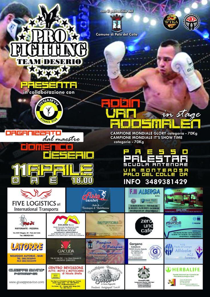 Voor informatie betreffende seminairs stuur een email naar teamvroosmalen@live.nl -- For Seminair information please send an email to teamvroosmalen@live.nl