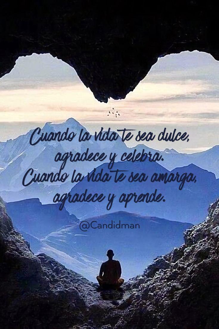 Cuando la vida te sea dulce agradece y celebra. Cuando la vida te sea amarga agradece y aprende.  @Candidman     #Frases Candidman Motivación Reflexión @candidman