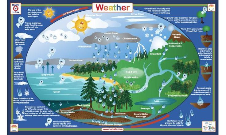 Weather Activity Placemat by Tot Talk