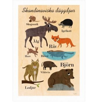 Skandinaviska däggdjur av Ingela P Arrhenius från OMM design