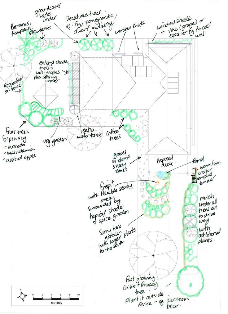 Preliminary design sketch - Glover residence, Brisbane. Urban permaculture design for subtropical climate. http://www.urbanabundance.com.au