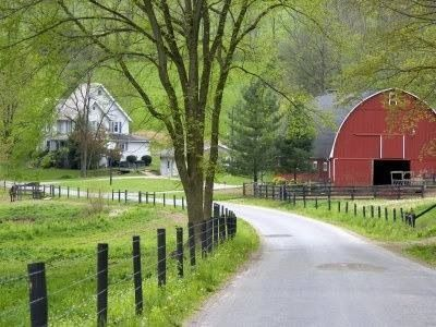 Love this! It's the perfect setting... trees, perfect barn, white house...