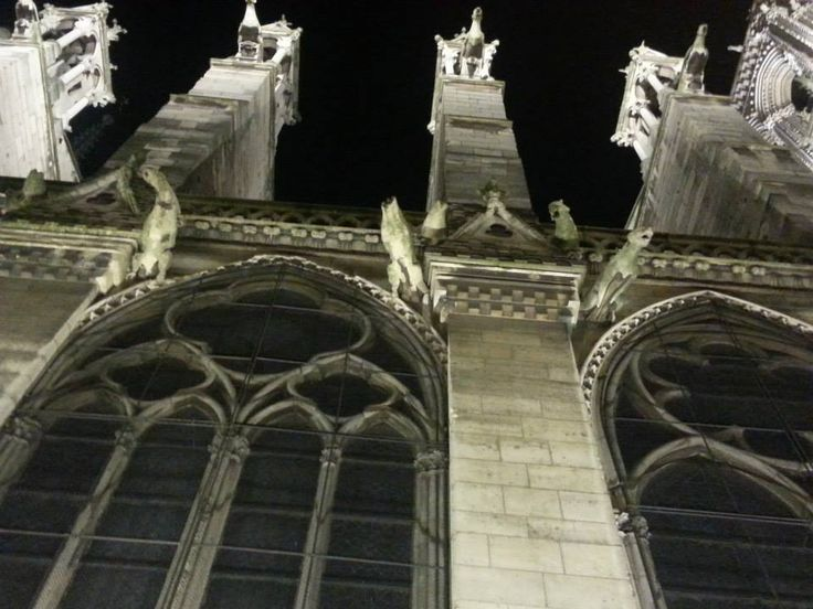 Regarder en haut - Cathédrale Notre Dame de Paris - taken November, 2014