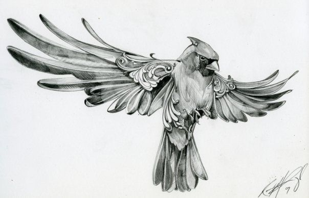 Cardinal sketch - reminds me of my Grandma Ruby.....