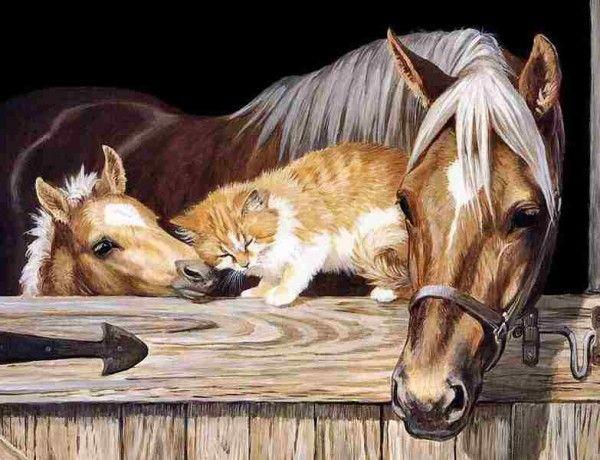 Sanat Hayvan İçindir Sanatın her dalının yeri ayrıdır. Ama resim çoğu insan için yaşama ilham veren en güzel sestir. Bu kez onları düşündük, sosyal medyayı karıştırdık ve en beğenilen resimleri derledik.  Haberin devamı ajanimo.com'da