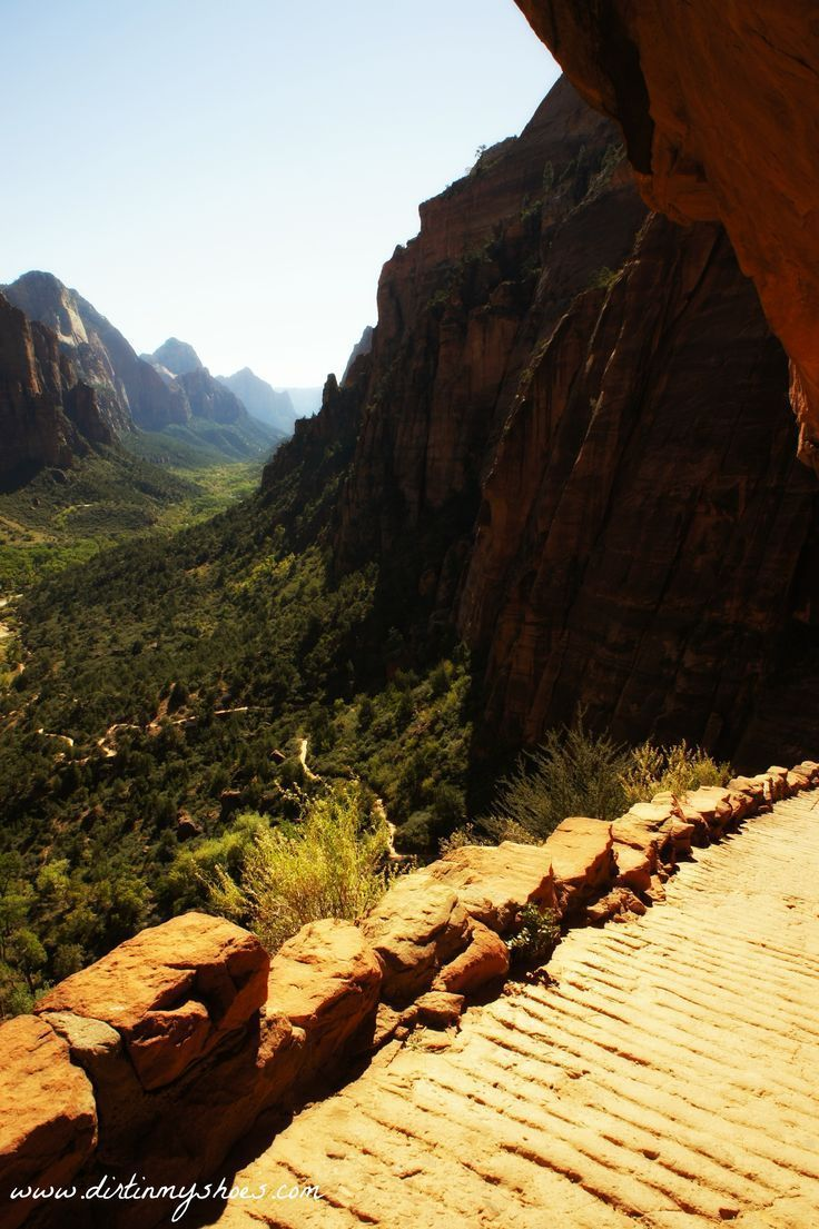 Discover the in's and out's of Zion National Park from a former park ranger! This information is amazing!