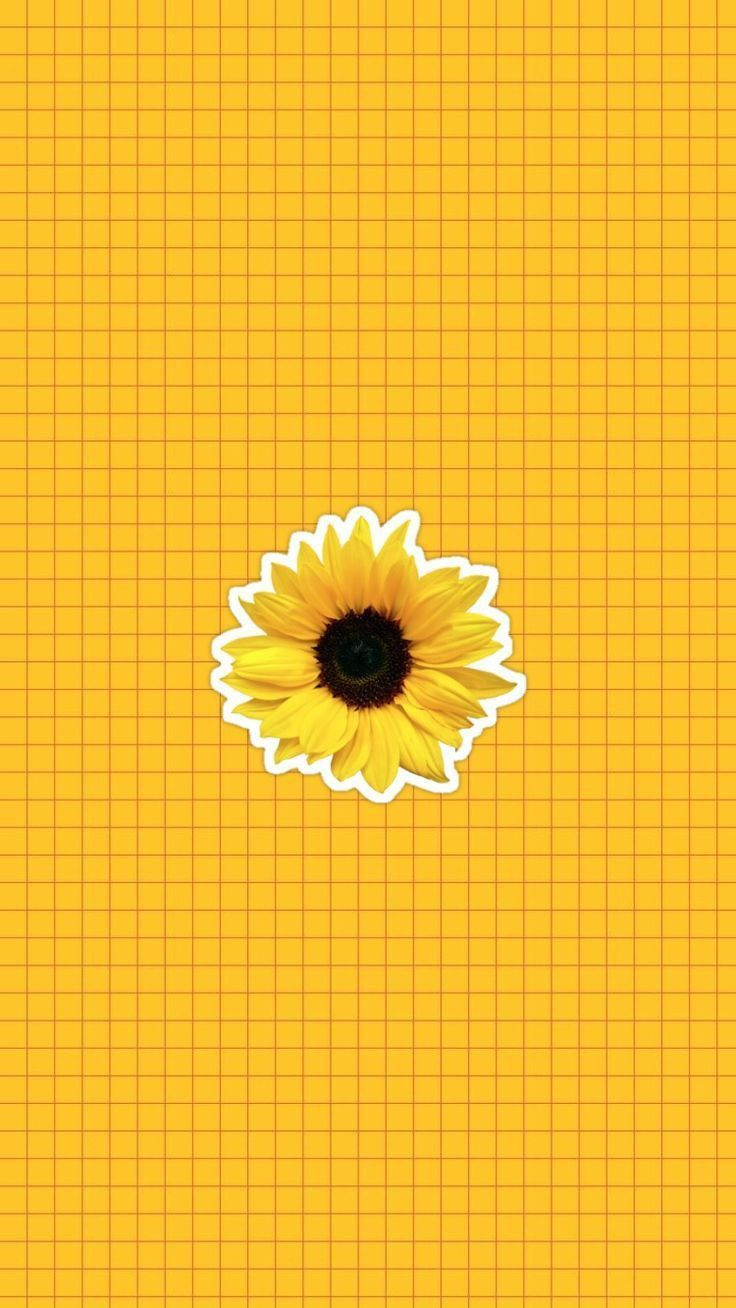 Pin By Maskanah Nur Asih On Multifandom Sunflower Wallpaper