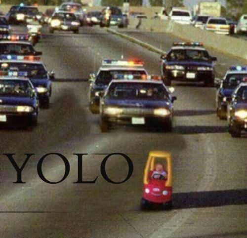 the only acceptable thing with YOLO on it that I will ever pin...you go little buddy!