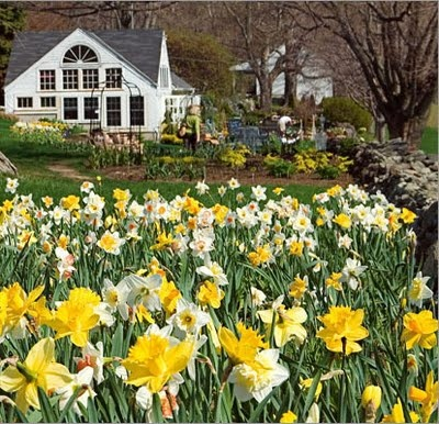 239 best connecticut images on pinterest connecticut barn and white flower farm litchfield ct mightylinksfo