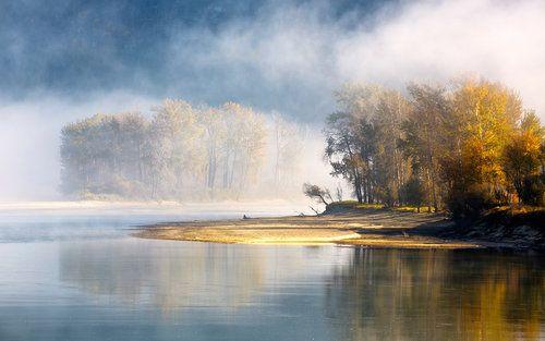 Misty morning by Nevenka Papic