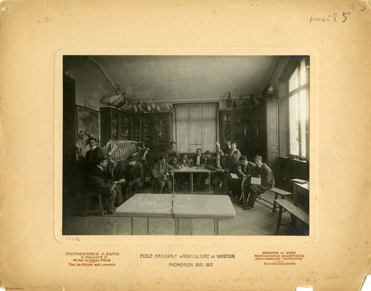 Grignon, Laboratoire de zoologie (Promotion 85), photographie ancienne /  © Musée du Vivant - AgroParisTech