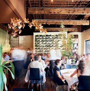 Best Italian Restaurants in the US:  Trattoria Lucca, Charleston, SC;  Terramia Ristorante, Boston;  Al Forno, Providence, RI;  L'Amante, Burlington, VT