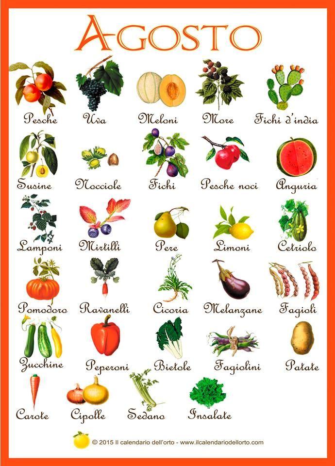 verdura stagione agosto/settembre - Cerca con Google