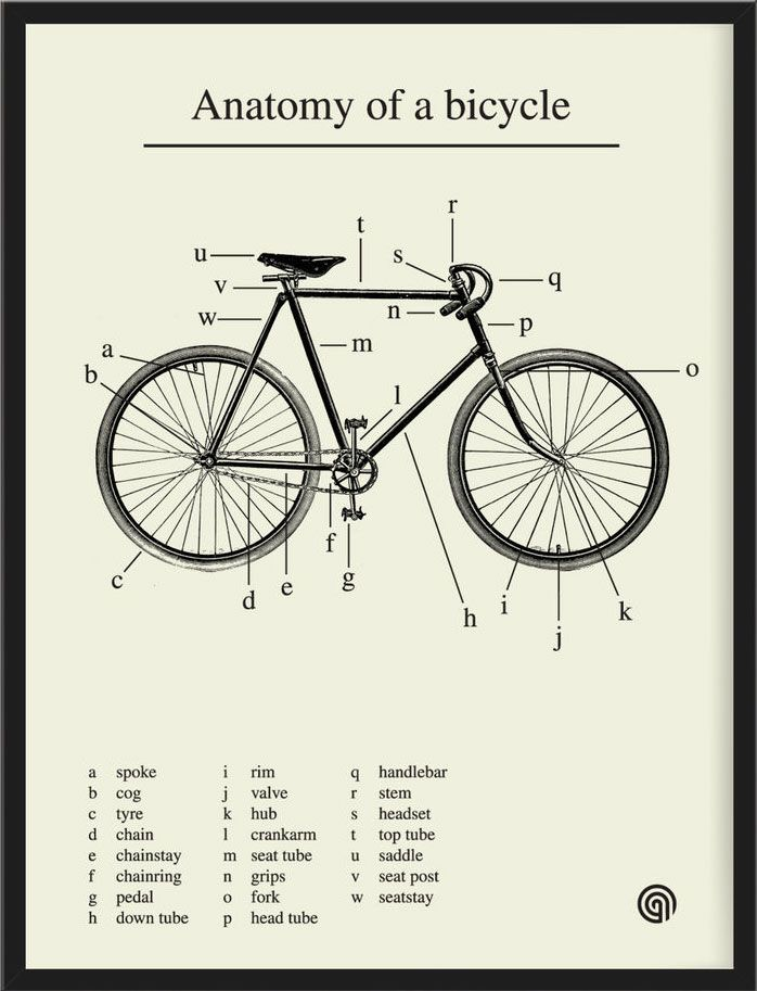 cinoh:  Anatomy of a bicycle, in a lovely print by Antony Oram. Pair with this illustrated vintage bike safety manual and the brief history of the pursuit of happiness on two wheels. (↬ swiss miss)