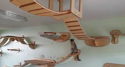 Amazing German Designed Cat Climbing Furniture