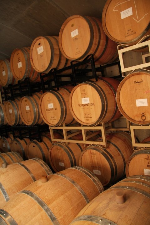 Burrowing Owl Winery Casks | Oliver, British Columbia BC, Canada