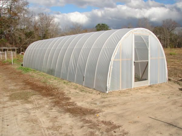 How i built my cheap pvc hoop green house pic heavy pt for Estufas para invernaderos