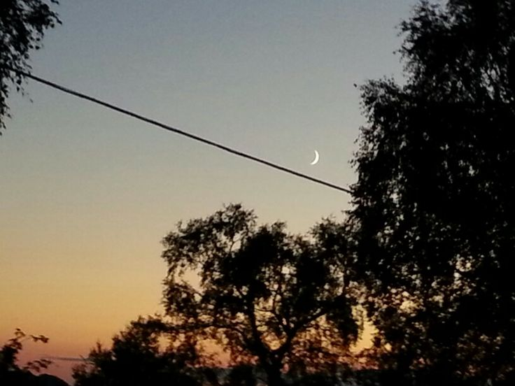 Almanacco Lunare Moon 2014  For Android look @http://bit.ly/195P5dQ For Apple look @ http://bit.ly/IHw9Yw